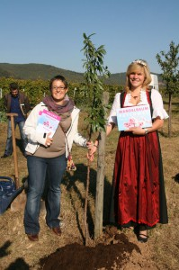 Der erste Mandelbaum der Paten wird eingepflanzt